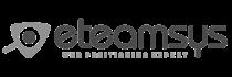Logo eTeamsys